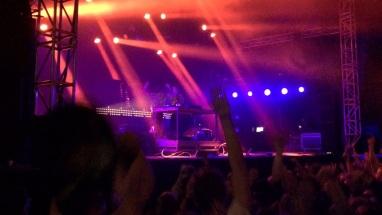Nause på Arvika Hamnfest 2015. Foto: David Fryxelius.