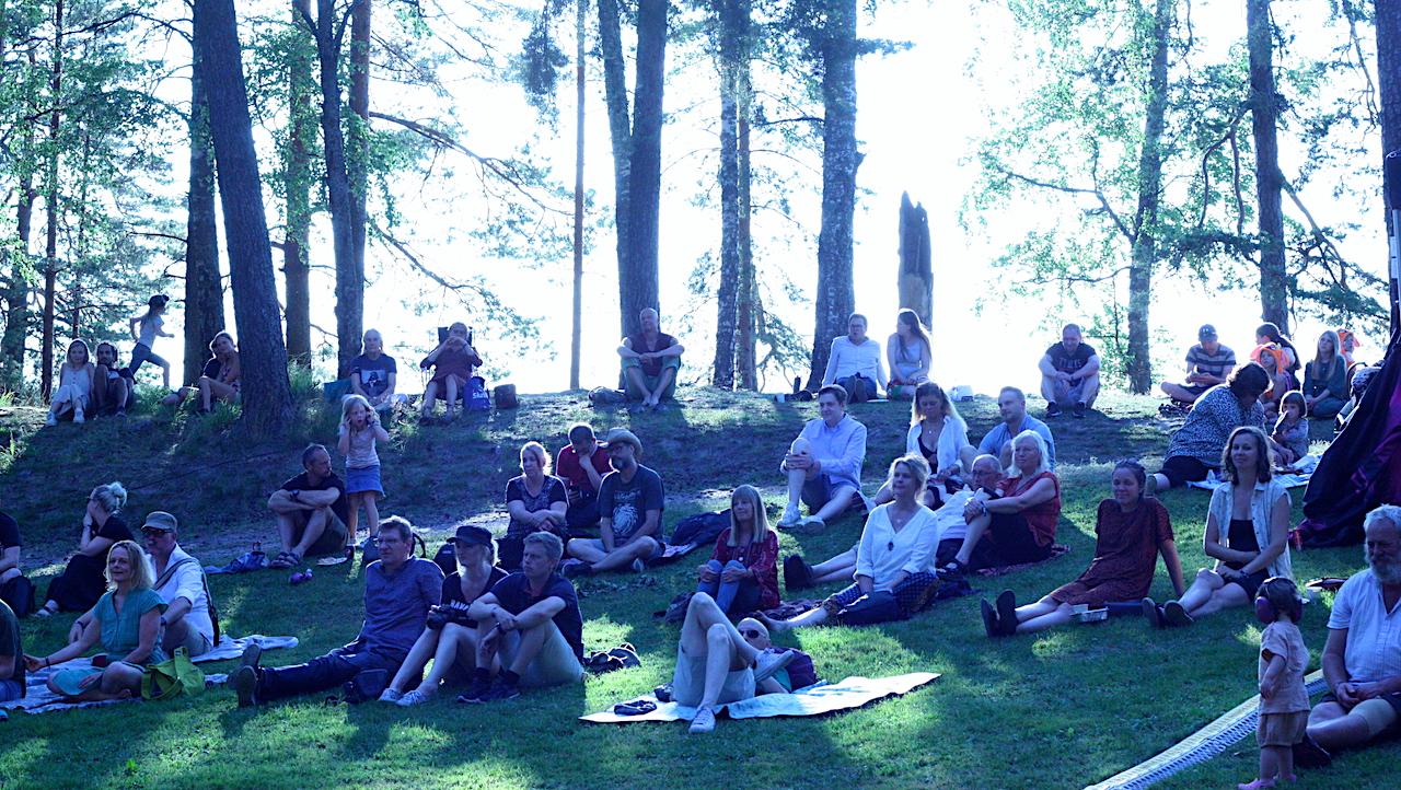 Publik på Viksholmsfestivalen 2021. Foto: David Fryxelius.
